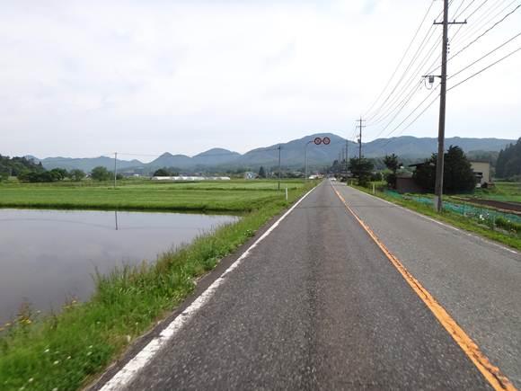 10 高原の道.JPG