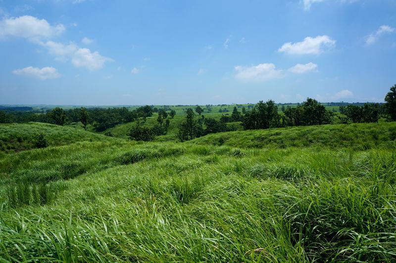 12 外輪山の草原はここからが一番.JPG
