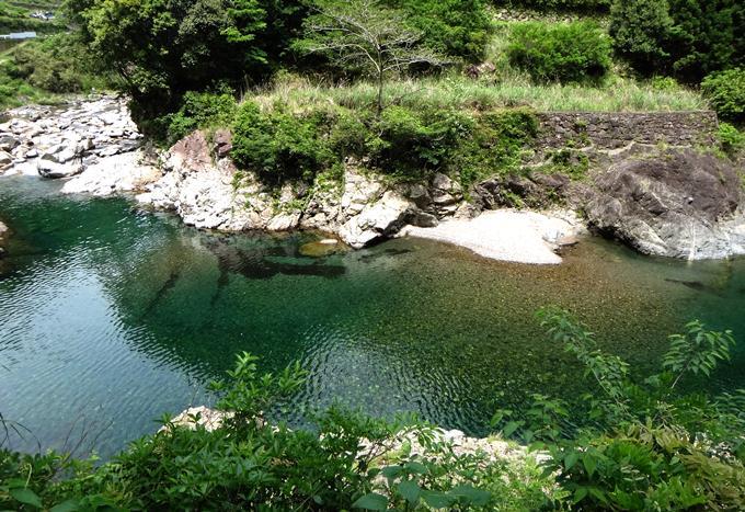 15 水が綺麗だよ~.JPG