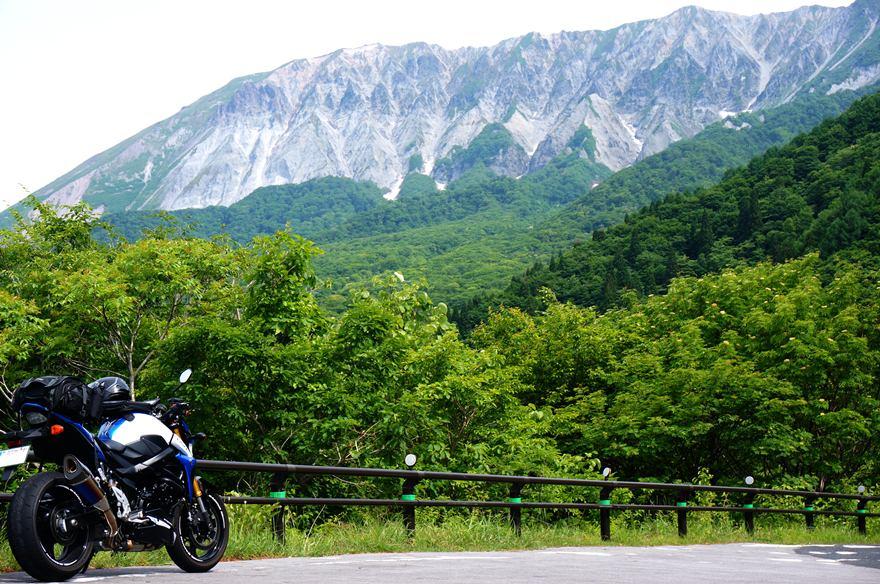 18 深緑の大山.JPG
