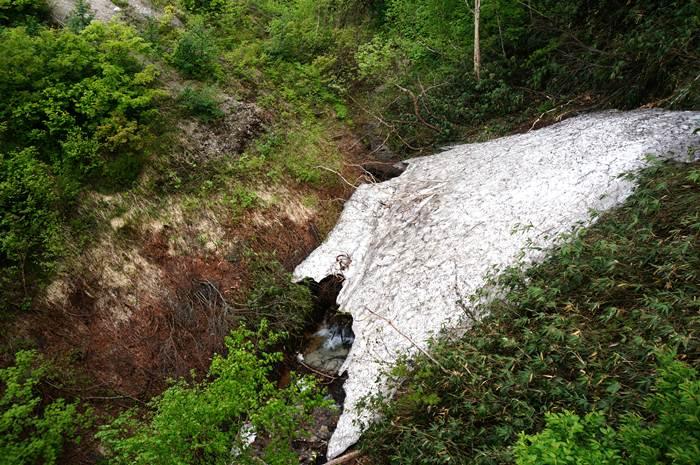 19 残雪が出てきた.JPG