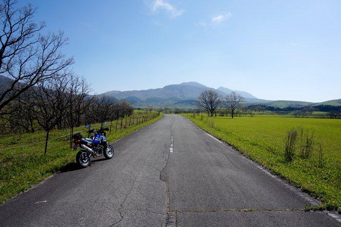 1 今年の緑の草原は早い.JPG