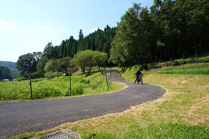 1 林道リンリン.JPG