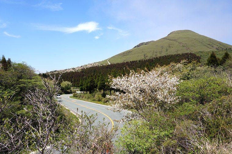 23 春先の風景.JPG