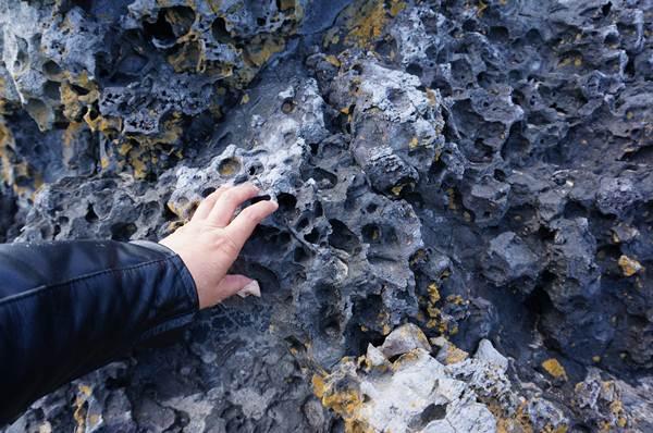 23 珊瑚みたいな石だらけ.JPG