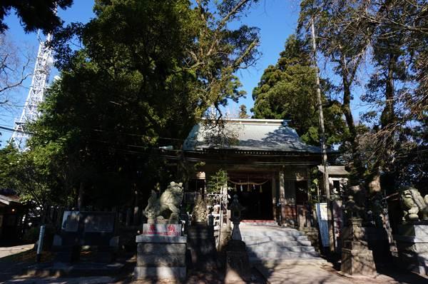 25 山頂の神社.JPG