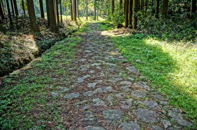 27 江戸時代の道.JPG