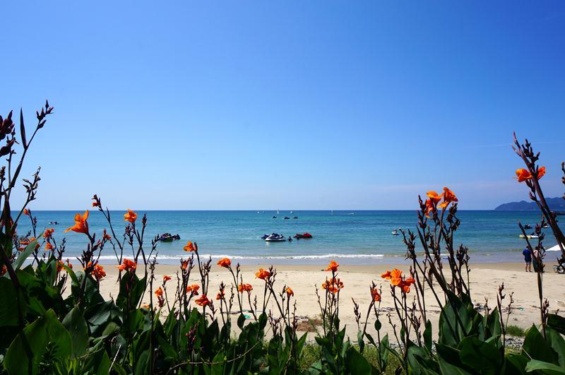 41 ビーチコーミングの浜が.JPG