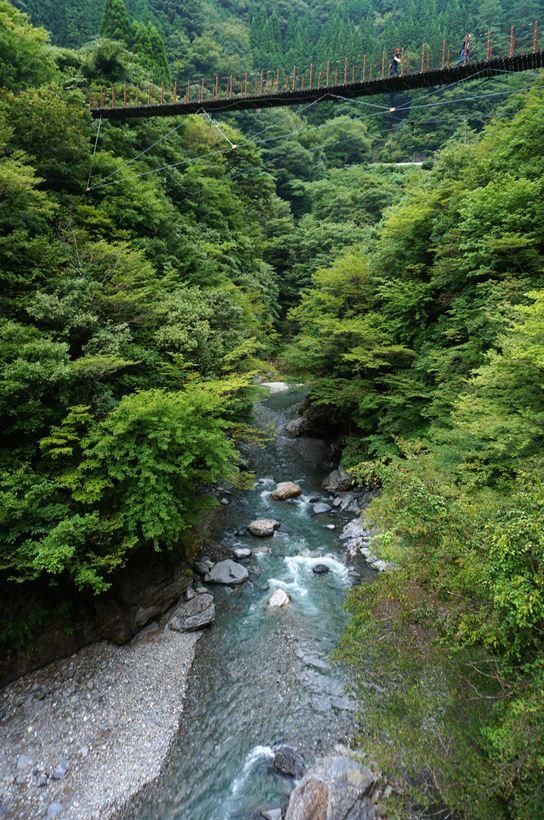 47 下の川が綺麗.JPG