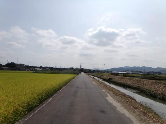 4 超マイナーな道.JPG
