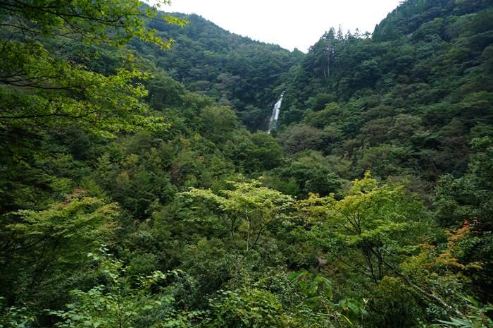 53 栴檀轟の滝.JPG