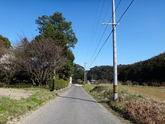 5 こんな路地をツーリングした最初のライダーはオレだ.JPG