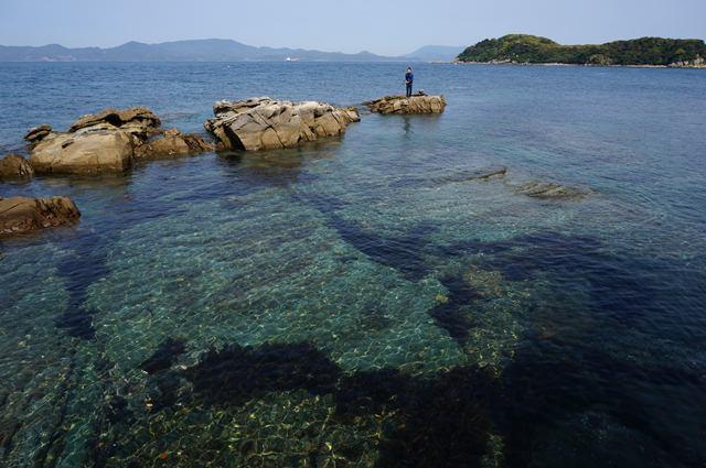 5 恐ろしく水が綺麗.JPG