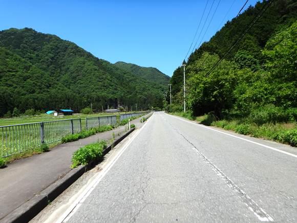 6 初夏の緑が綺麗.JPG