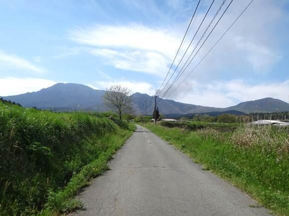 8 良い雰囲気の道.JPG