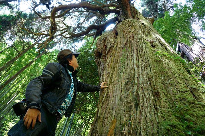 9 木の呼吸を感じるぜ.JPG