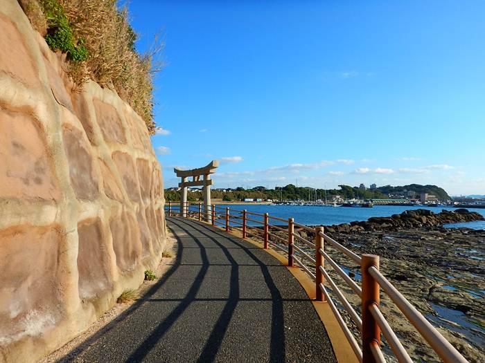 今日のビーチコーミング.JPG