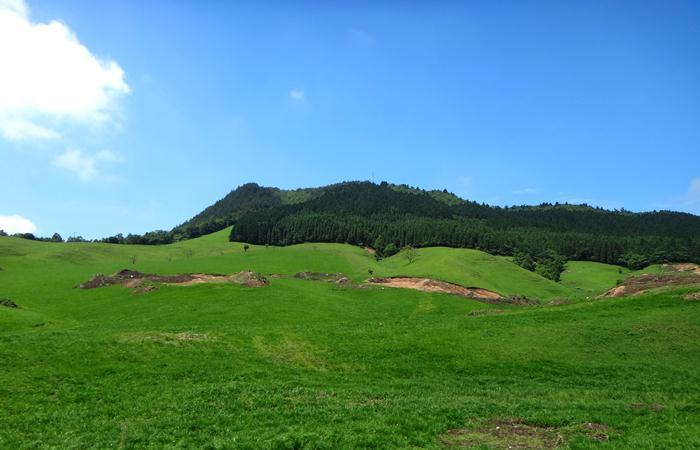 15 牧場の草原です.JPG