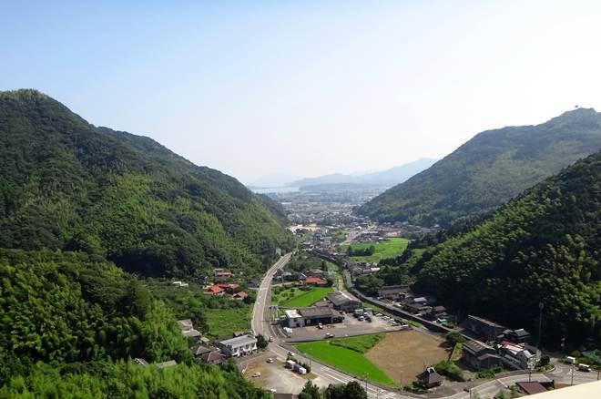 6 松蔭の街.JPG