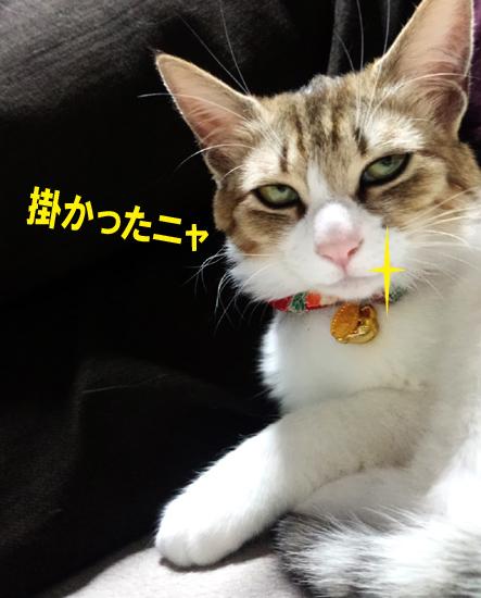 黒幕柚子.jpg